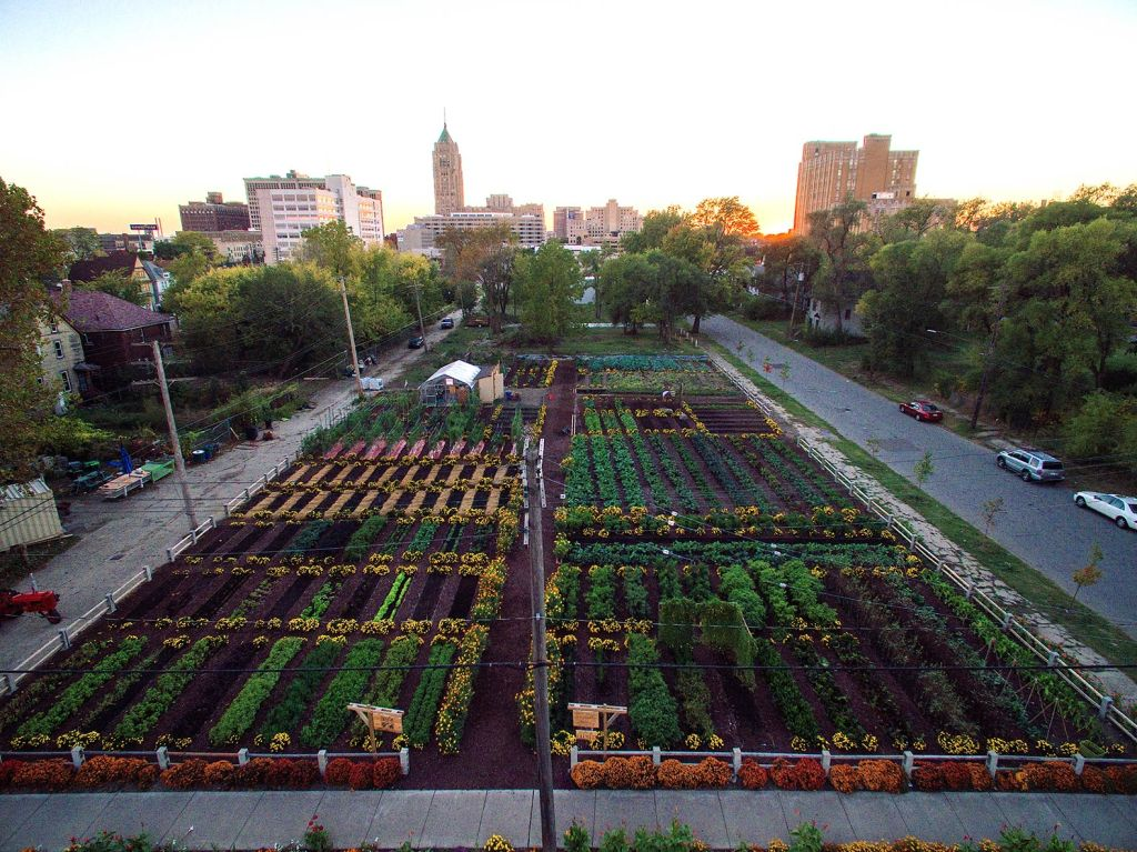 MUFI Urban Farm - Image credited to MUFI